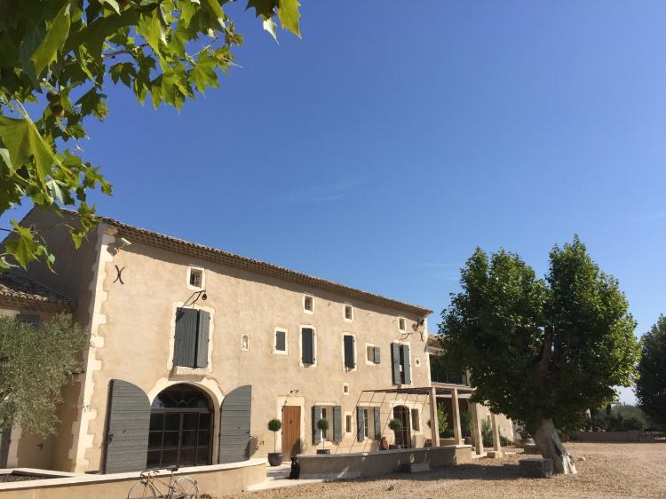 Maillane, domaine, viticole, caveau, winery, alpilles